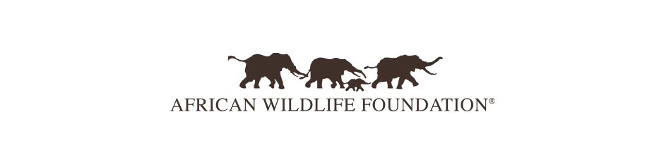 African-Wildlife-Foundation 2